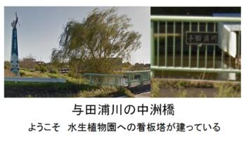 与田浦川2.png